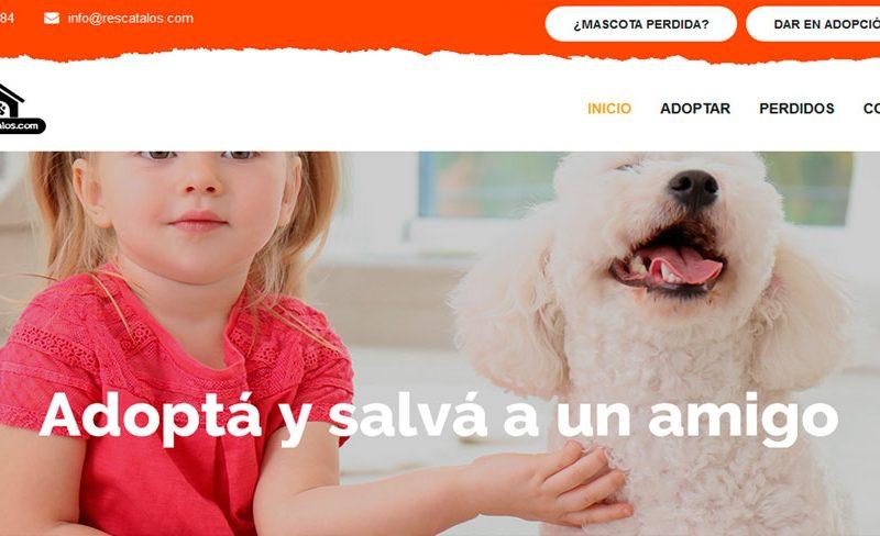 Rescatalos.com 16